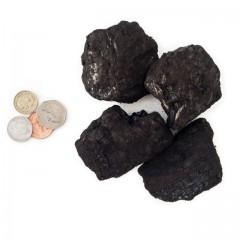 Guernsey Coal - Economy Housecoal